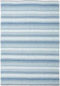Wilma - Azul Tapete 220X320 Moderno Tecidos À Mão Azul Claro/Cinzento Claro (Algodão, Índia)